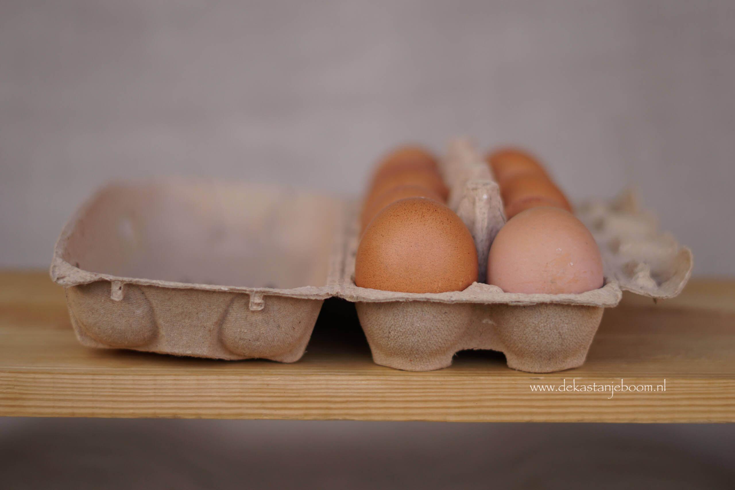 eieren bruin De Kastanjeboom