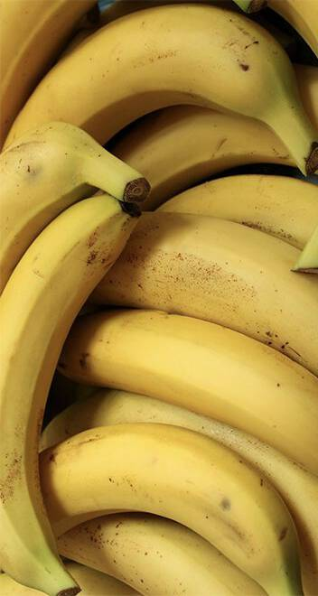 Bananen De Kastanjeboom