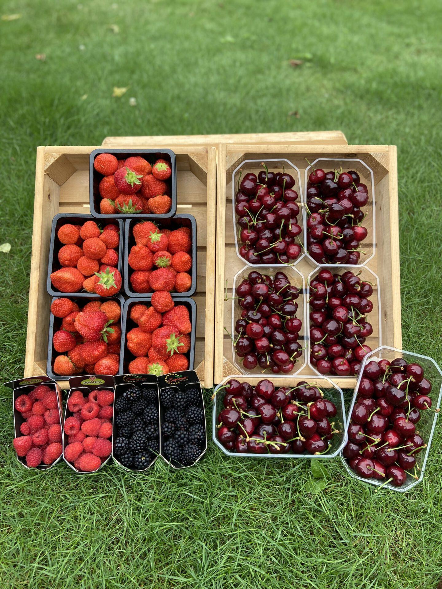 Fruit bij De Kastanjeboom
